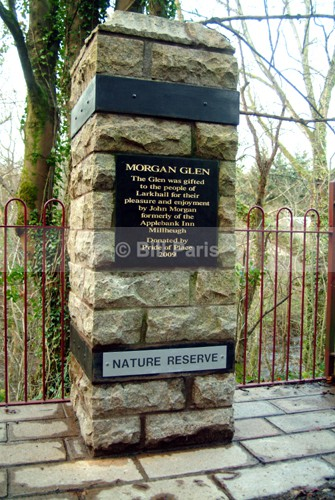 Pride of Place Morgan Glen Larkhall