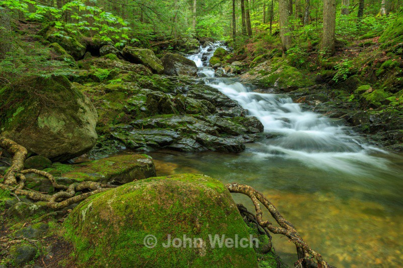 Gordon Falls - White Mountain National Forest and Northern New Hampshire