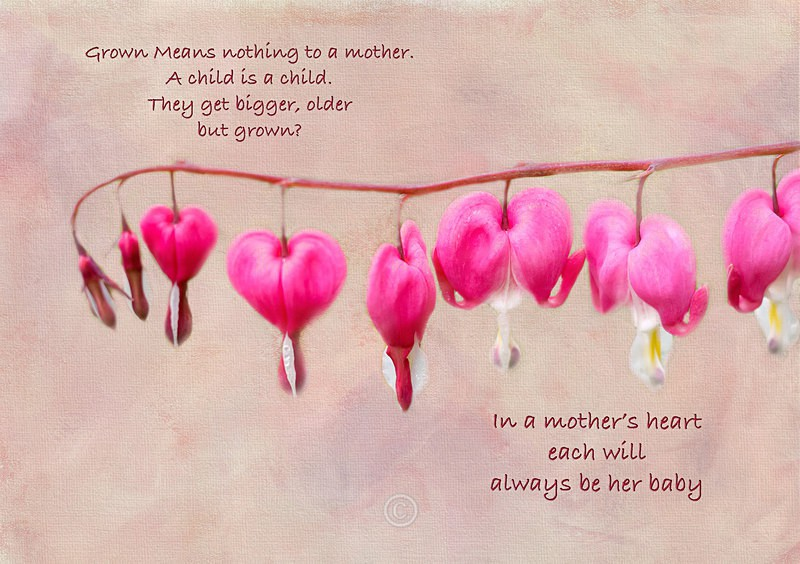 A Mother's Heart - FLOWERS