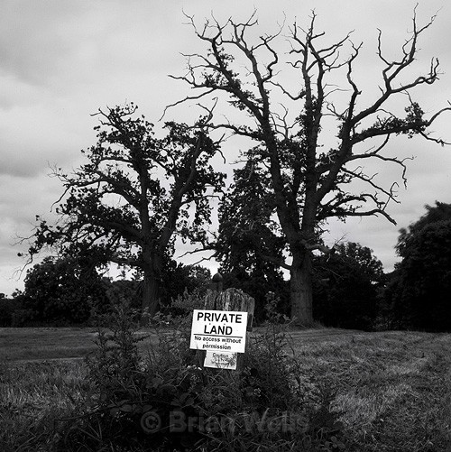 Private Land, Salhouse - The Black & White Gallery