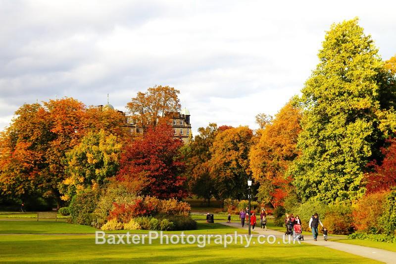 A Walk In The Autumnal Gardens - The Valley Gardens (Harrogate)