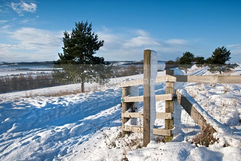 Snowy Footpath. - Snow Scene's /Winter