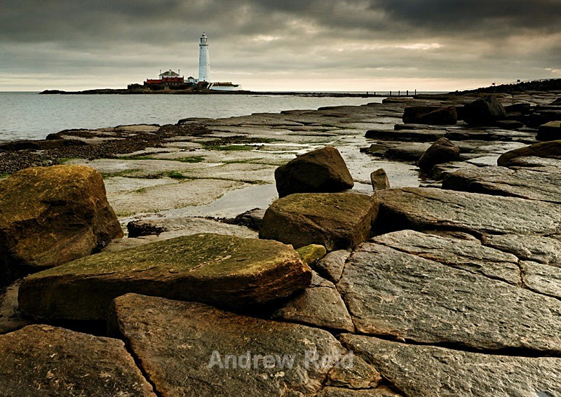 St Marys Light House - Landscapes