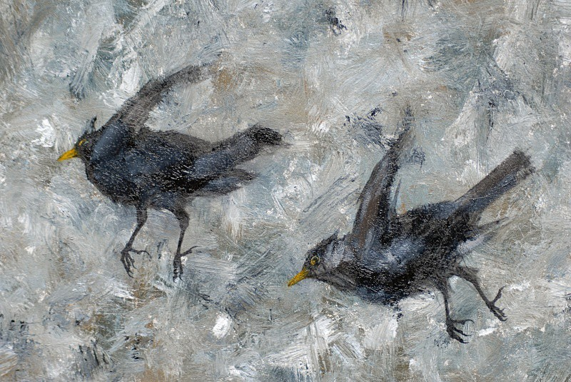 Blackbird Detail - Bird Paintings