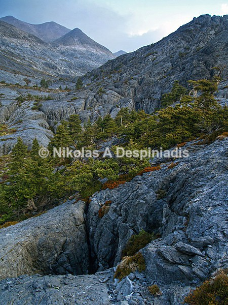 Χαράκια I Rugged terrain - Νότια Ελλάδα I South Greece