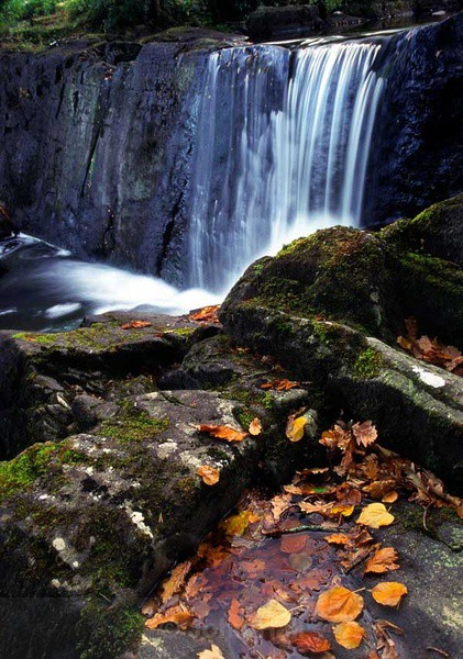 autumn fall waterfall at killarney national park,co. kerry,ireland