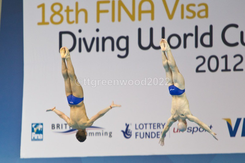 WCD-116 - World Cup Diving