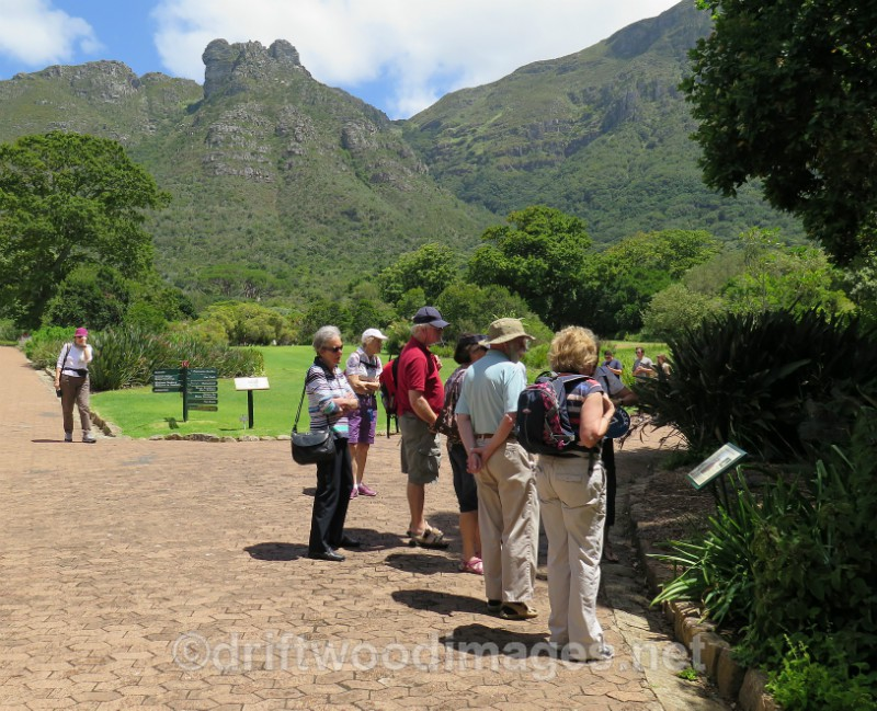 South Africa Cape Town National Botanical Garden group and guide 3 - Cape Town, South Africa