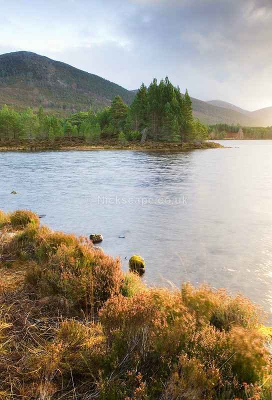 Loch Gamhna bathed in light | Aviemore | Cairngorms Photo Gallery | Scotland