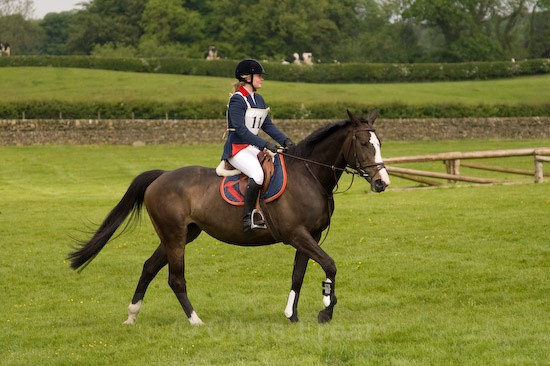 19 - Equestrian Photography