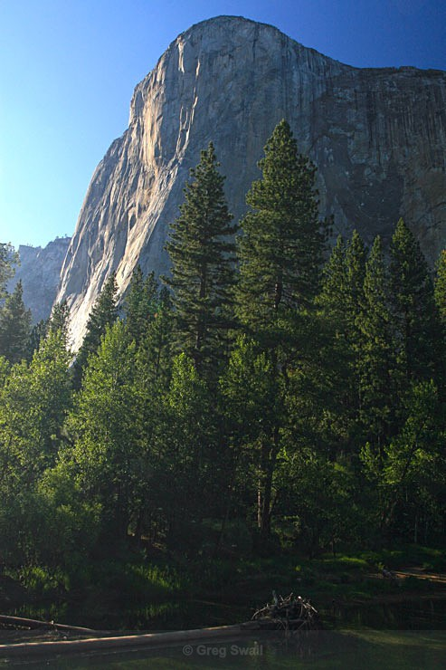 El Capitan - USA (South West Road Trip)