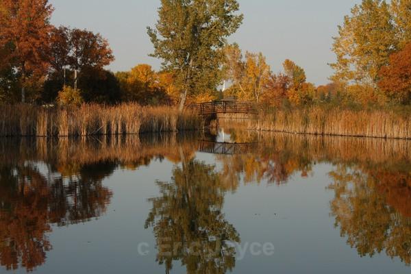 Autumn at Independence Park - Marshall, Minnesota
