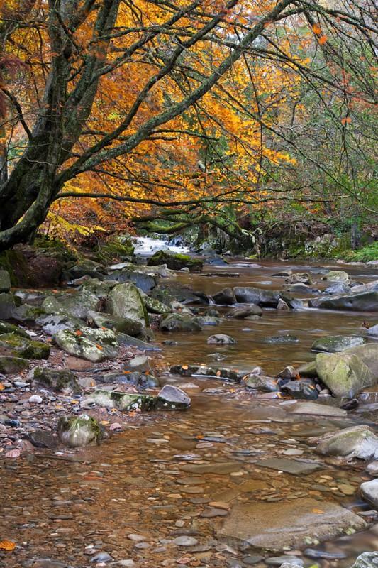 bruar stream - Perthshire