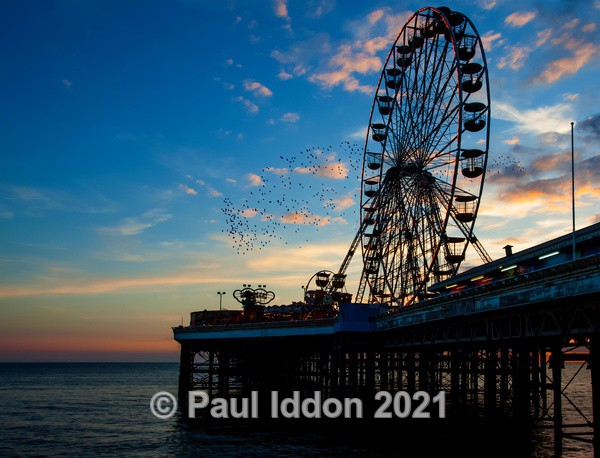 Wheel on the Pier - Landscapes