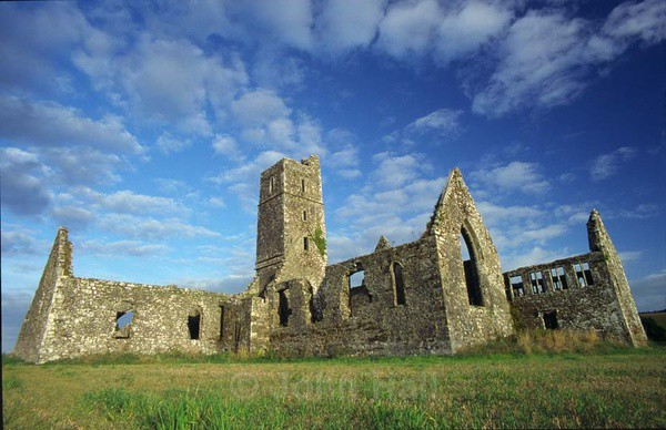 wide angle view of kilcrea friary, ovens, co. cork, ireland.