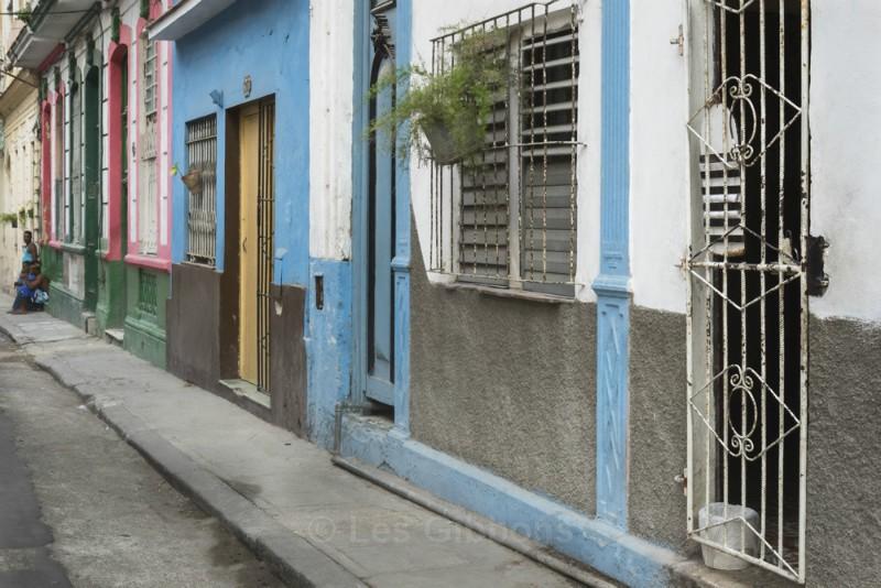 hanging basket - Cuba