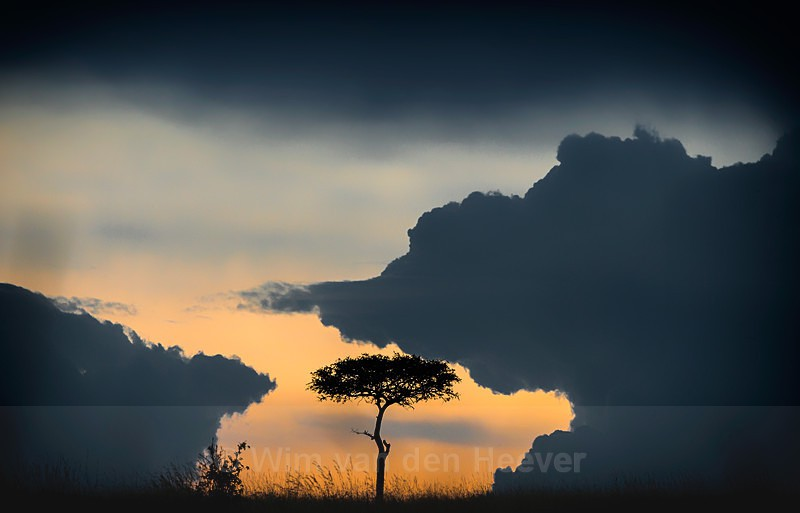 - Landscape by Day