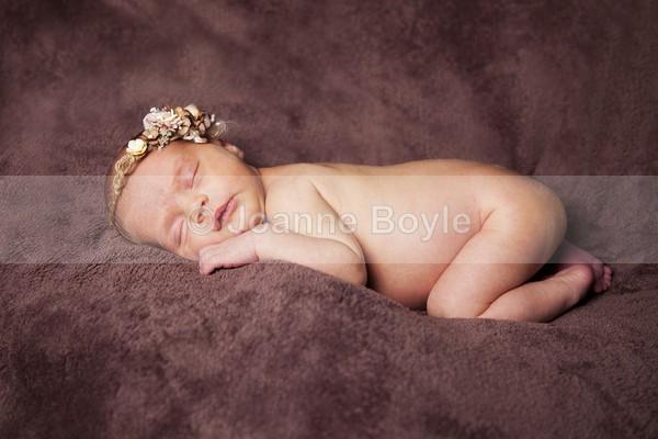 adj6552 - Children Photography