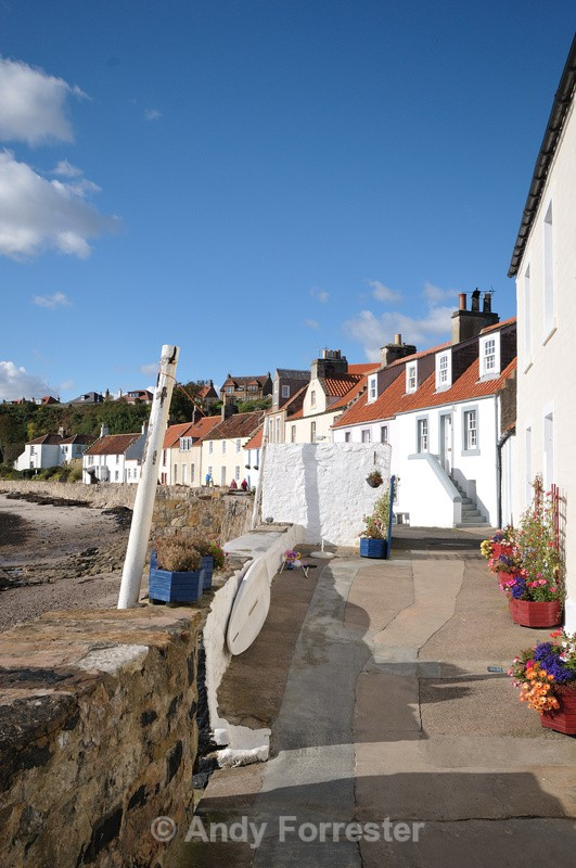 The Shore Pittenweem - Around Elie
