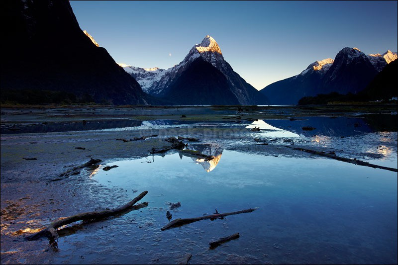 Milford Sound Driftwood - Photographs of New Zealand