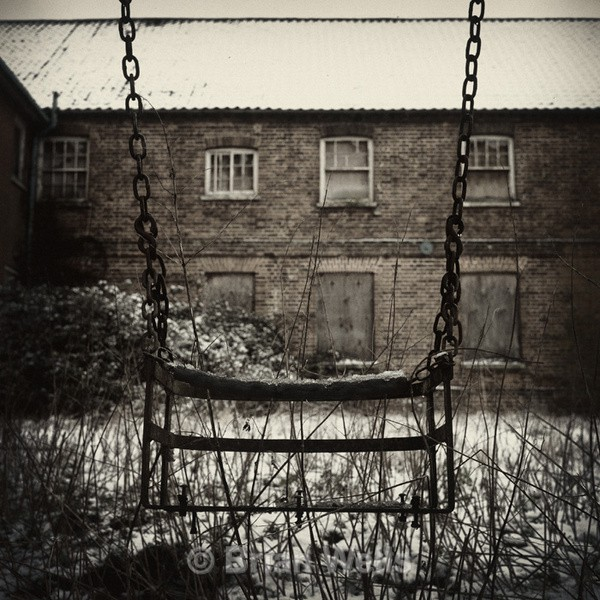 Solitary Swing at Heckingham Asylum - Miscellaneous Gallery