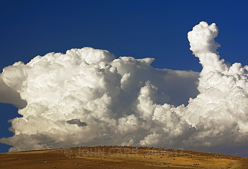 Storm Clouds and Sheep 1. - THE STARS AND STORMY WEATHER PHOTOS