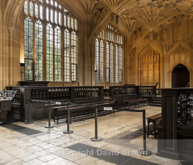 Divinity School Oxford 5 by David Brown - Different Oxford