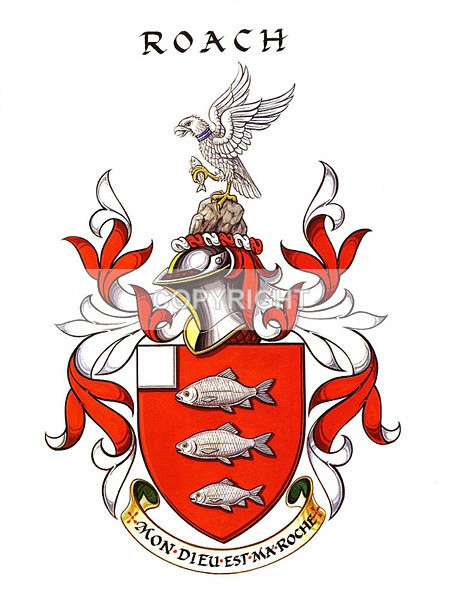 Roach 3 - Heritage Family Name and Coat of Arms Store
