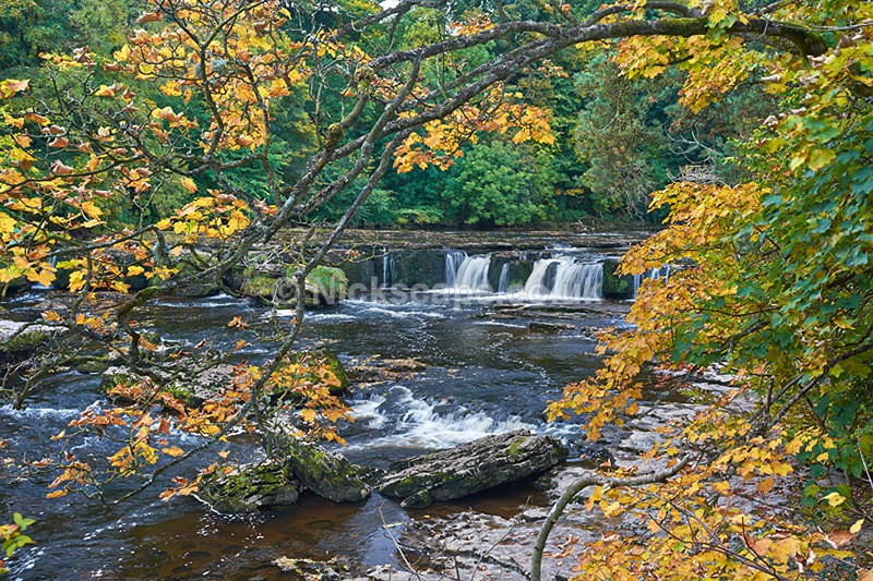 Upper Aysgarth Falls in Autumn - Yorkshire Dales - Yorkshire