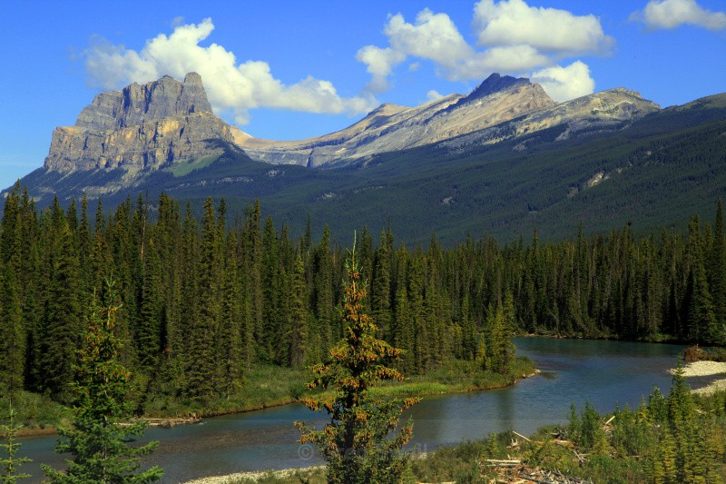 Castle Mountain View - BC and the Rockies,Canada