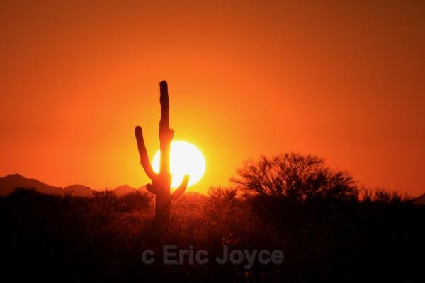 Father's Day Sunset, 2009 - Tuscon, Arizona