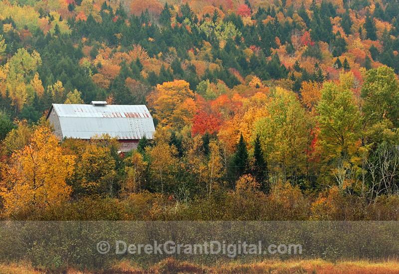 Kings County New Brunswick Canada Autumn Foliage - Old Barns & Buildings