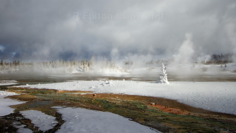 Norris Geyser Basin - Yellowstone