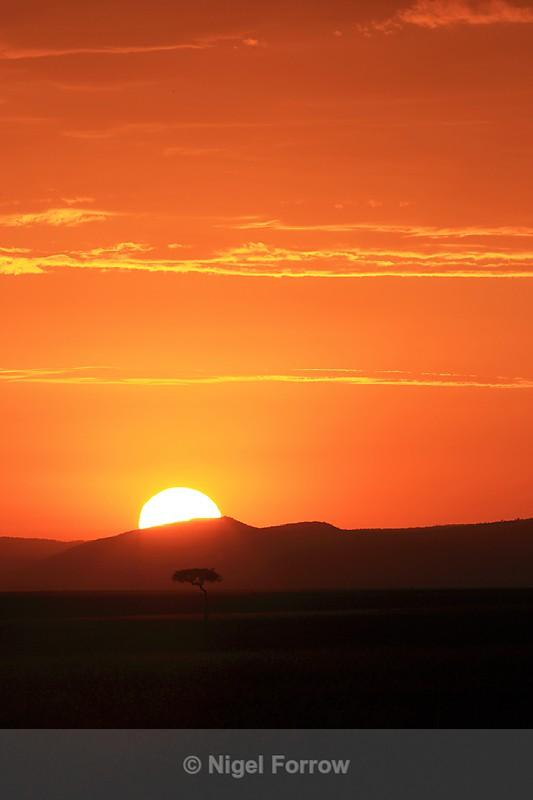 Sunrise over the Masai Mara - Kenya