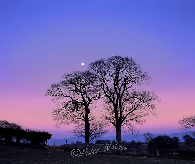 Near Denbigh Denbighshire - Wales