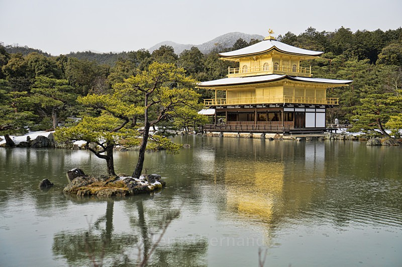 - Japan