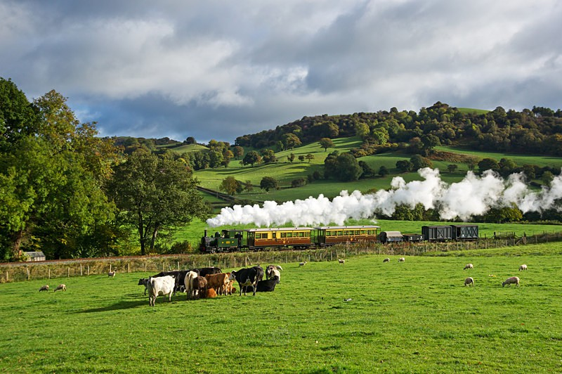 Rural bliss - The Lure of Steam Latest Images