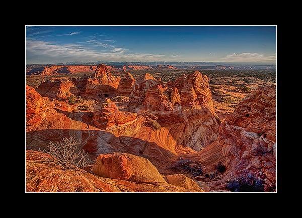 - Arizona
