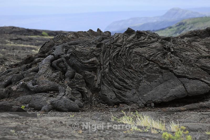 Lava field near Pu'u Loa Petroglyphs, Hawaii - Hawaiian Islands, USA