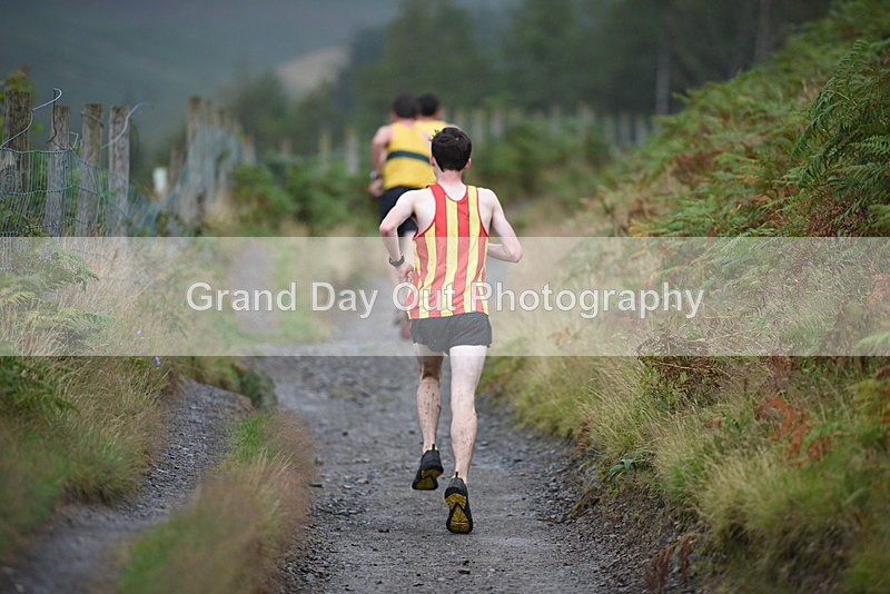 BOR_6196 - Round Latrigg Fell Race Wednesday 16th August 2017