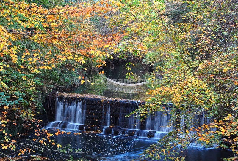 Jesmond Dene Falls - Newcastle upon Tyne - Northumberland