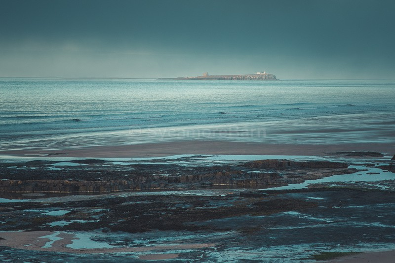 Farne Island sea haar - Seascape Gallery