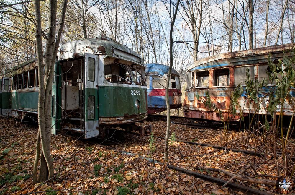 Trolley Graveyard | Overgrown - The Trolley Graveyard