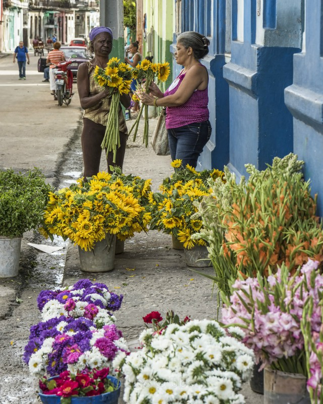 the flower seller - Cuba