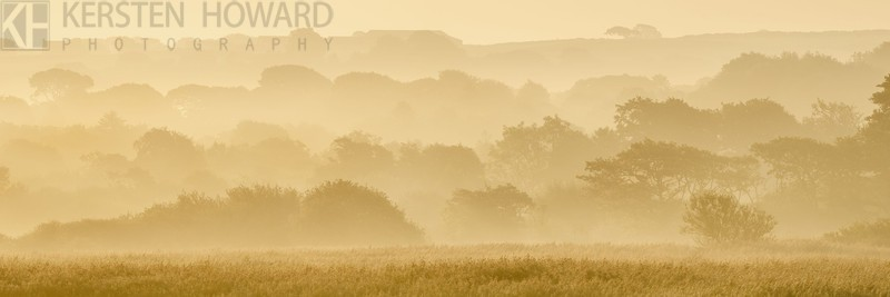 Misty Layers - Nevern Estuary - Images from book