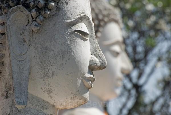 Buddha Statues - Ayutthaya