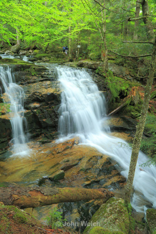 Tama Fall - White Mountain National Forest New Hampshire