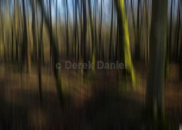 Tree Impression #2