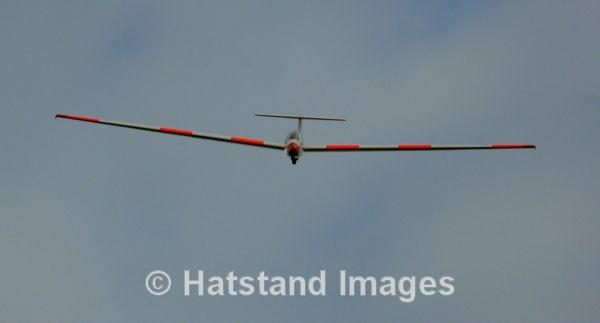 Skinny wings... - in the air