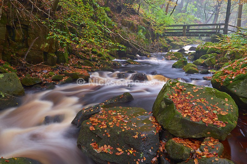 Autumn Woodland at Padley Gorge - Peak District National Park - Peak District Landscape Photography Gallery